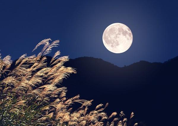 中秋の名月を愛でる2014年の観月会