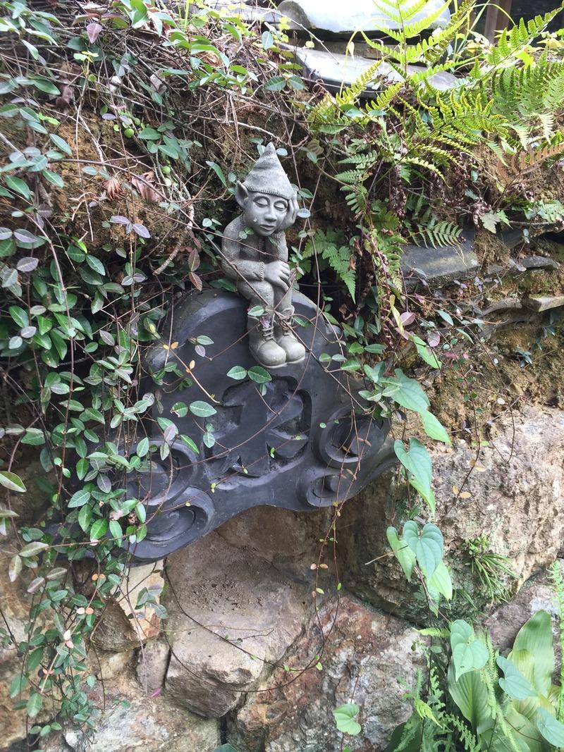 土佐水木の庭