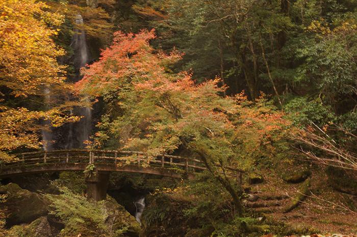 高知 津野町 パワースポット 長澤の滝
